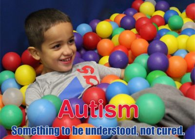 Autism Something to be understood, not cured